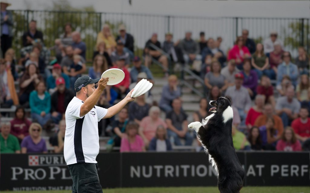 A dog and owner at a Purina Pro Plan Incredible Dog Challenge event.