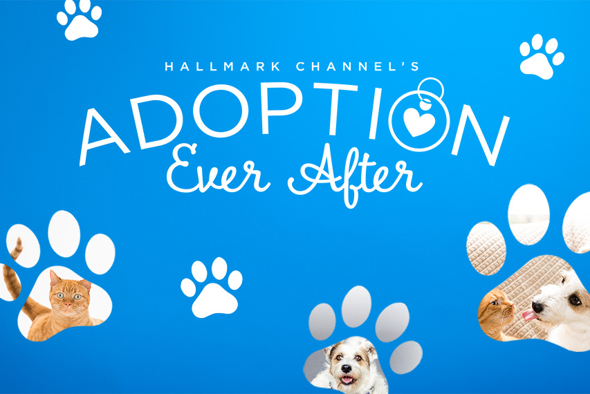 Adoption Ever After